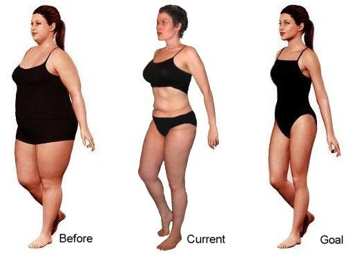 Cla weight loss ncbi picture 9